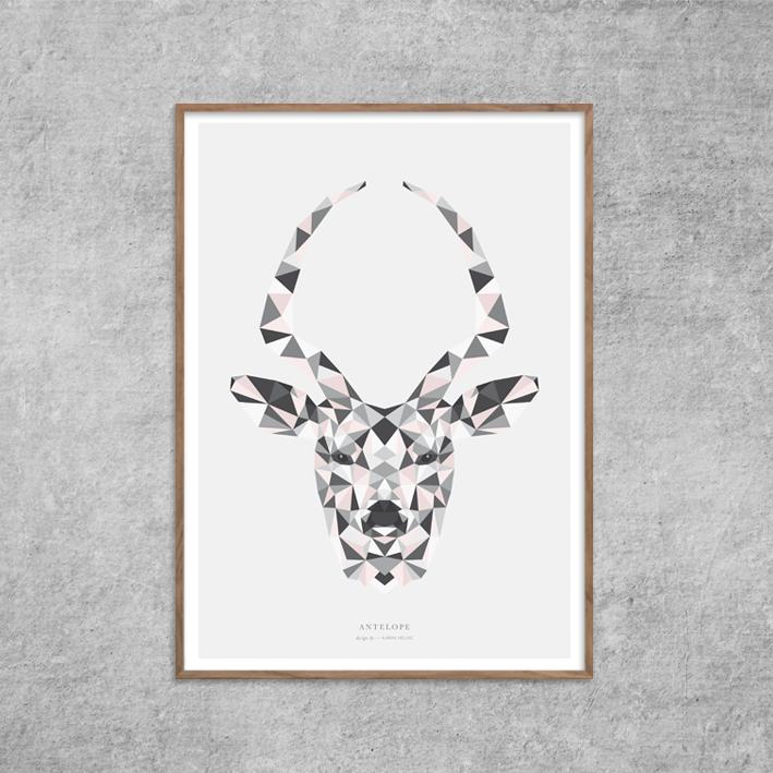 Plakat_Antilope_Antelope-rosa_nude_Red-Zone