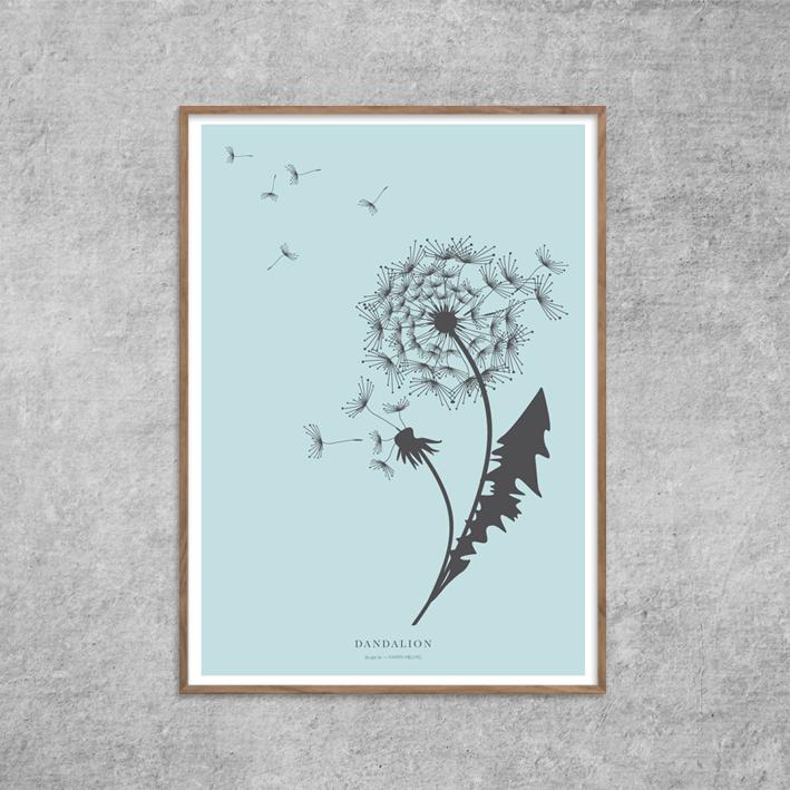 poster-design-dandalion_blue_red-zone