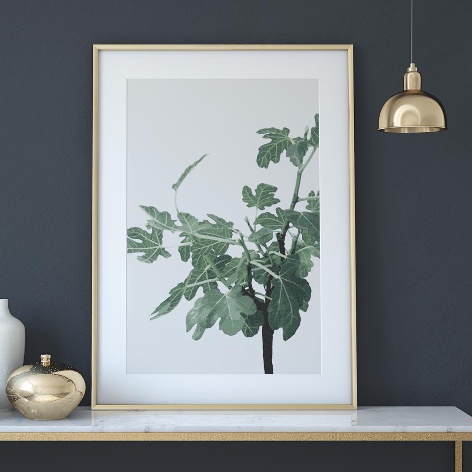 Figen_plakat_design_Botanik_poster