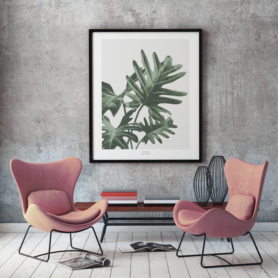 Filodendron_Xanadu_Plaktermedplanter_Botanik_living_indretning_grøntrend_posterdesign_red-zone